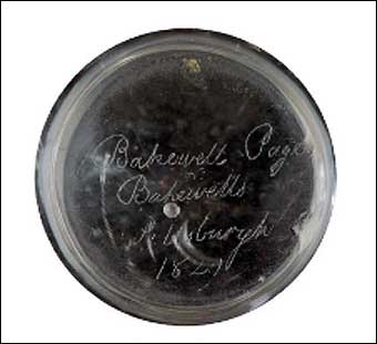 Glass Manufacturing: Pittsburgh, PA - Signed on the bottom of the vase